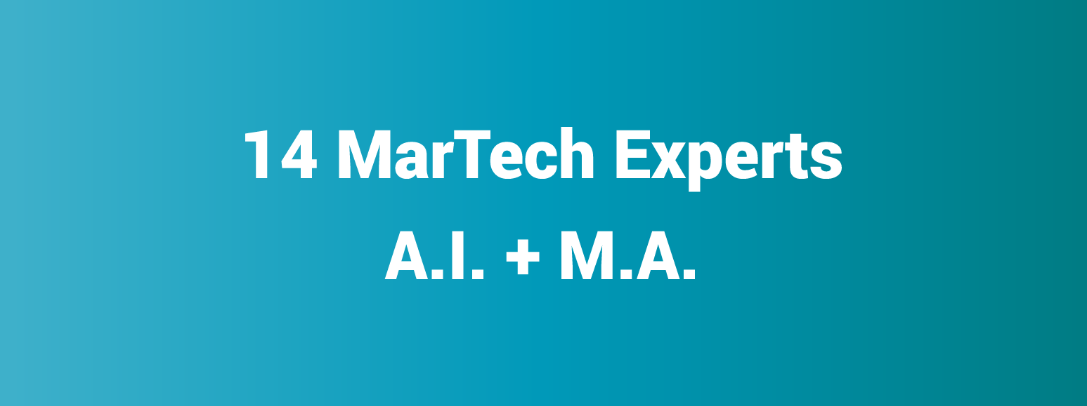 14-marketing-experts on AI in MA
