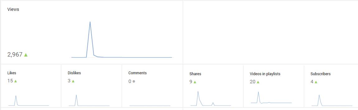 youtube video niche marketing results