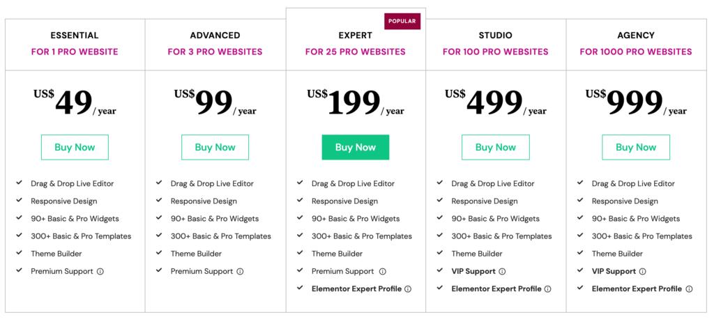 Elementor pricing for SaaS startups