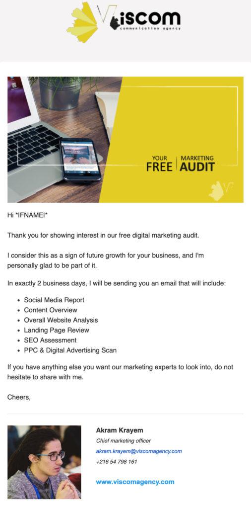 Viscom B2B email design
